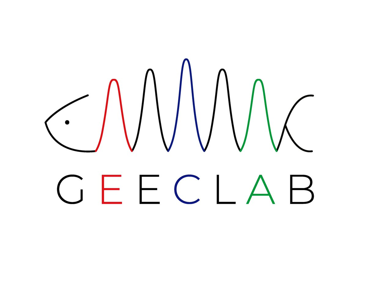 geeclabCL photo