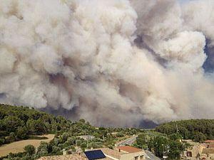 Ara fa vuit anys #incendis2012 #AltEmpordà Recordem la feina  clau de cada dia a les vinyes, oliverars, camps i pastures extensives per mitigar-ne els efectes #agricultors #ramaders #mosaicagrícola https://t.co/d4sCqcic6T