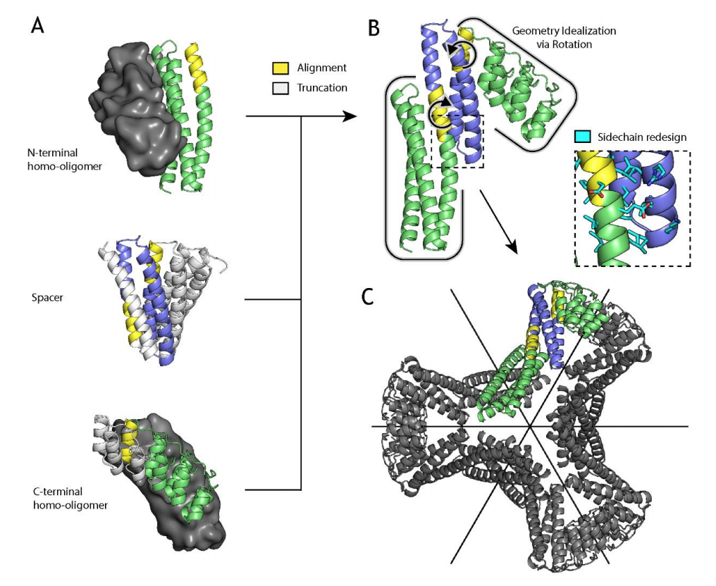 Check out our new @biorxivpreprint with David Baker, @veeslerlab, @WysockiVicki and Plückthun groups on scaffolds for cryoEM single particle reconstruction: https://t.co/cQwMDczV6O