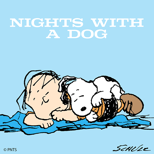 The best nights are nights with my dog. https://t.co/w4UEe7vslh