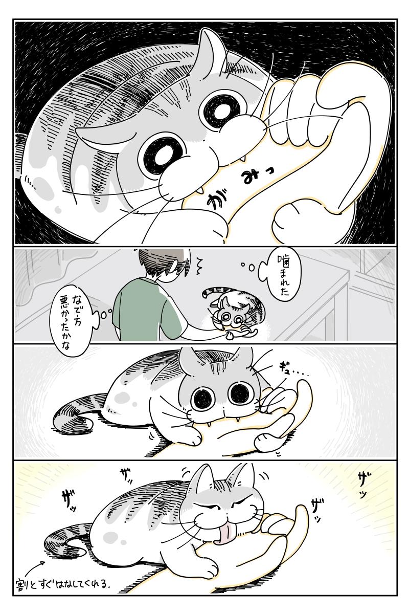 Topics tagged under 貓 on 紀由屋分享坊 EdqNcRWU8AArNIH