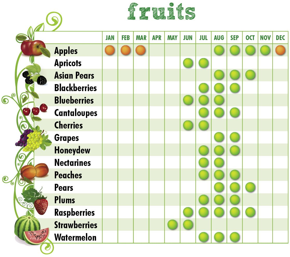 Want to buy local produce, but aren't sure what's in-season right now? Check out our charts below⬇️ #MDBuyLocal2020  Find fresh fruits and vegetables at farmers markets, farm stands, farm stores, and pick-your-own operations on @MDsBest website: https://t.co/6YmWZXDvru https://t.co/ntkoARUnnp