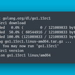 Image for the Tweet beginning: 🎉 Go 1.15 Release Candidate