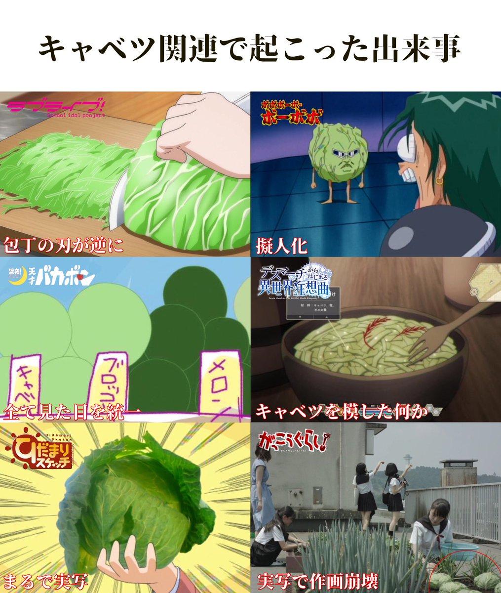 あるアニメによって?アニメ作品におけるキャベツの重要性が増す!
