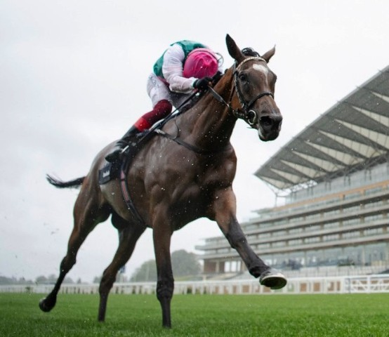 Enable - King George VI & Queen Elizabeth Stakes 2020