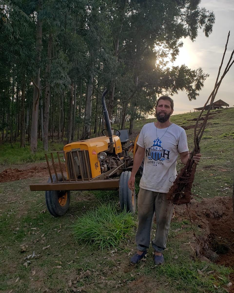 Em homenagem ao Dia do Colono, preparei o pomar de nogueira-pecã. Foram 50 nogueiras plantadas..  #gauchodageral #gauchodors #agriculturafamiliar #diadocolono https://t.co/8PXJ8OH3UH