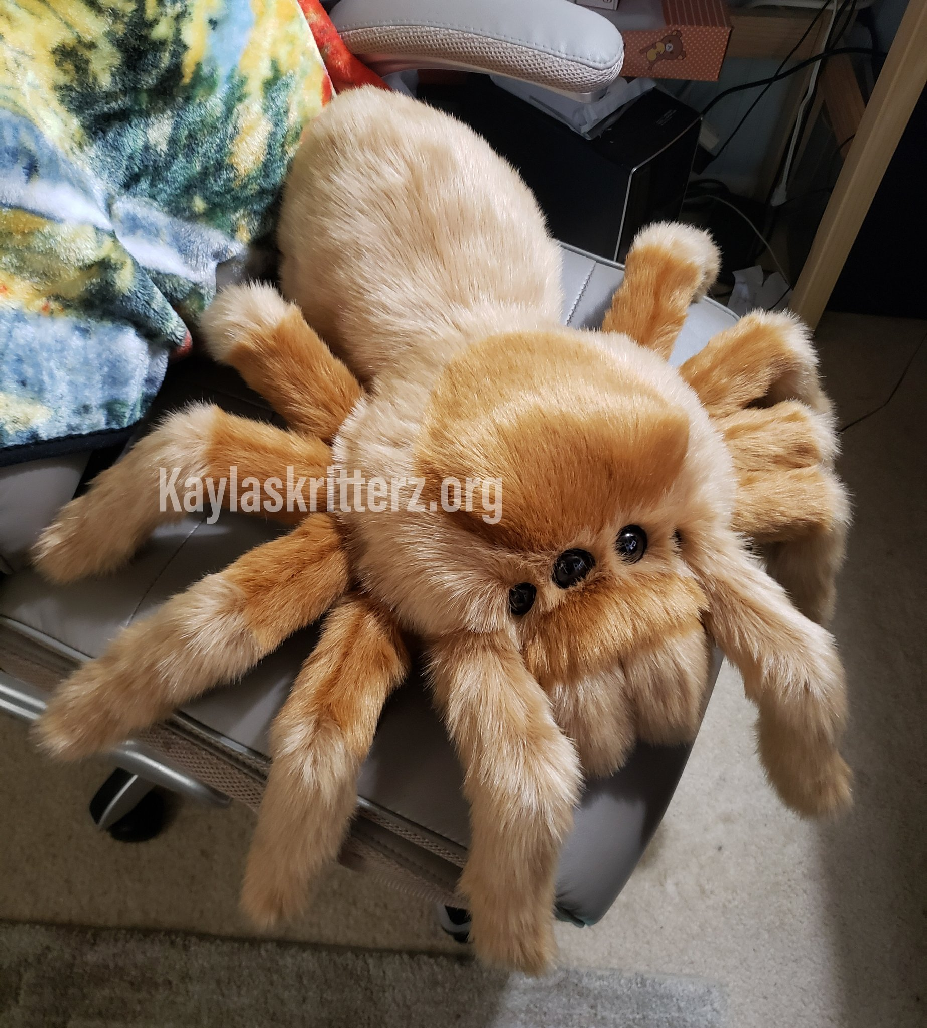 Tarantula Stuffed Animal, Blue On Twitter Finished Up This Rose Hair Tarantula Plush For Her Owner They Requested No Armature So Her Legs Are Quite Floppy And Cute Haha Official Pics To Come Soon As