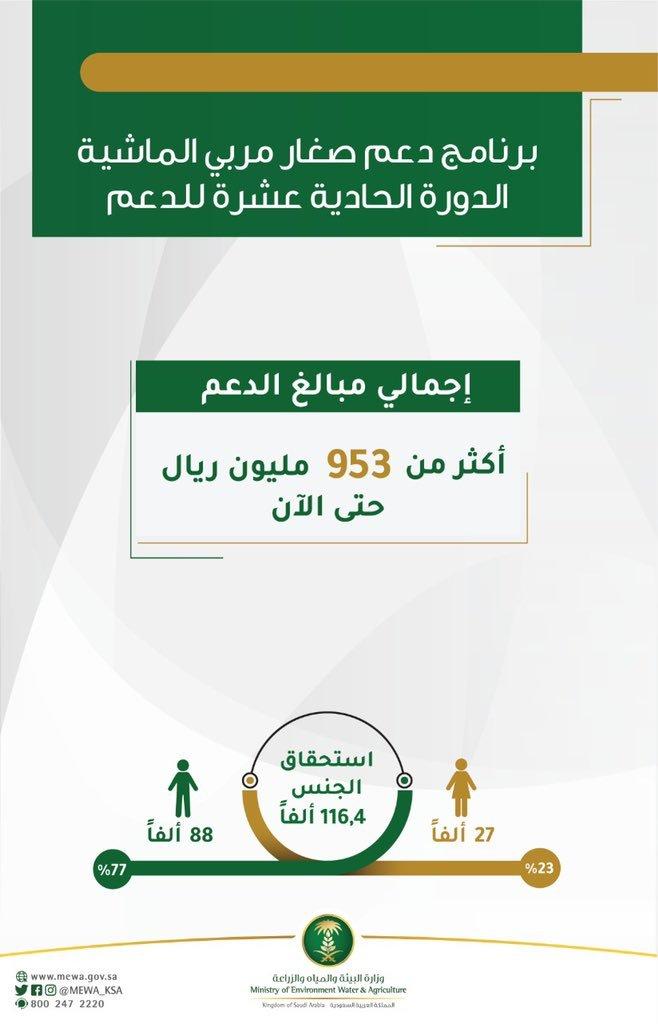 صحيفة تواصل صرف الدفعة الحادية عشرة للمستفيدين من برنامج دعم صغار مربي الماشية البيئة السعودية المواشي