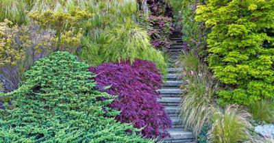 Cut into a steep hillside, homeowner Diana Magor's house in Santa Cruz, CA, overlooks a Japanese-inspired front garden and Monterey Bay, while the back offers views of a colorful terraced flower garden. Dense plantings along the sid http://www.keepingyouinformed.info/trendspottr/old-house/garden-makeover-hillside-paradise/?c=eyJ0eXAiOiJKV1QiLCJhbGciOiJIUzI1NiJ9.eyJub2RlX2lkIjoyODc3LCJwcmV2aWV3IjpmYWxzZSwiY29tbV9pZCI6MjU5MTQyNiwiZGVzdF9pZCI6MzU0MTE3OX0.70FJfYNMEkZ6OWDlo_evZSYAwm21Di0dIRSagFQhNvU…pic.twitter.com/DfmBJn5VvA