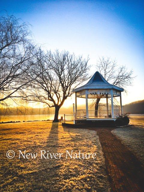 Remembering a #FrostyMorning at #ClaytorLakeStatePark ~ https://t.co/cxsOSdJeQx - #VaStateParks #NewRiverNature #NaturePhotography #VirginiaViews #VirginiaOutdoors ~ https://t.co/PzdM1RhW7d https://t.co/zblfvCKrpf