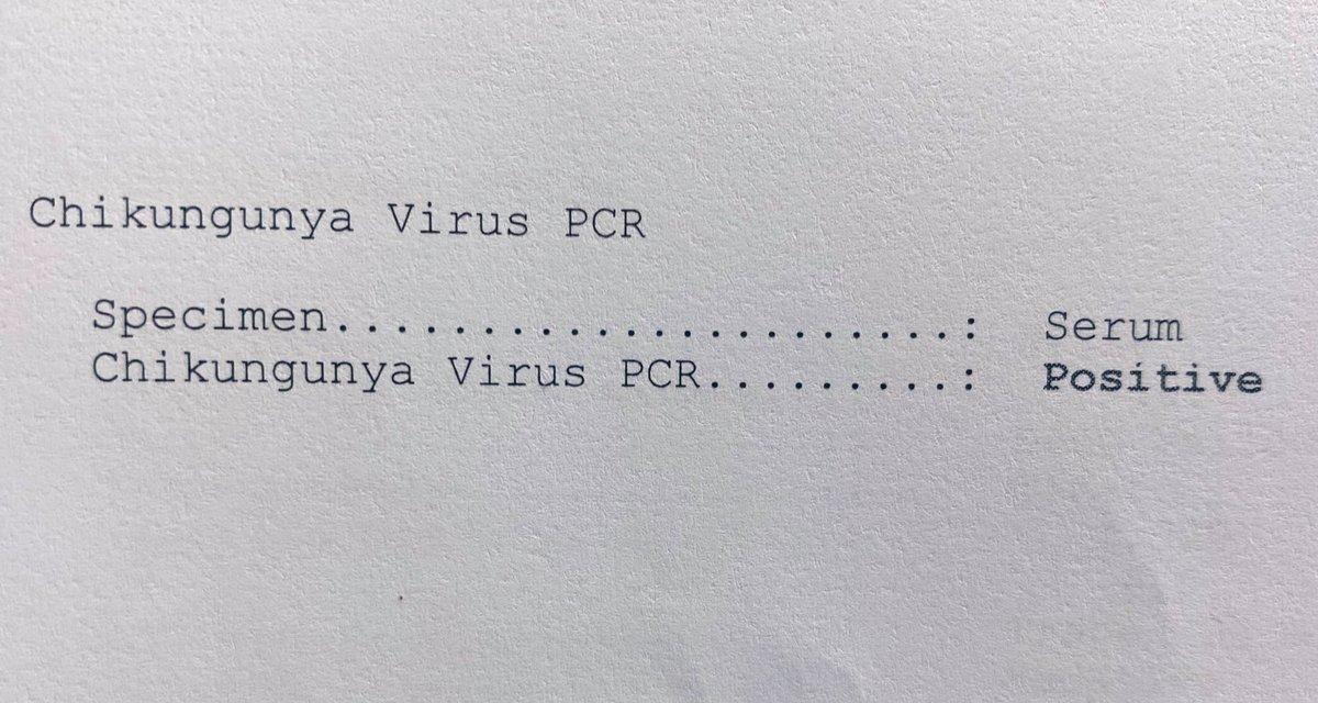 คนไข้เด็กน้อยวัย7ขวบ ไข้สูงปรี๊ด  มีผื่น มีปวดข้อ และเพลียมาก   โรคนี้ยังคงระบาดอย่างต่อเนื่องpic.twitter.com/UHQqyaPmME