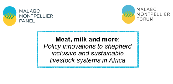 test Twitter Media - #DYK that 13 Delegates from @_AfricanUnion member states participated in our latest #MaMoForum and launch of the #MeatMilkMore report?  #ICYMI, view @MamoPanel members' presentation slides of the #MeatMilkMore report here: https://t.co/NYpwfyuAso https://t.co/62OdwcLUpV