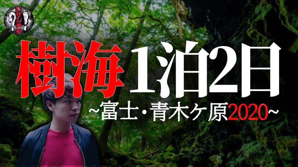 の 樹海 村 富士