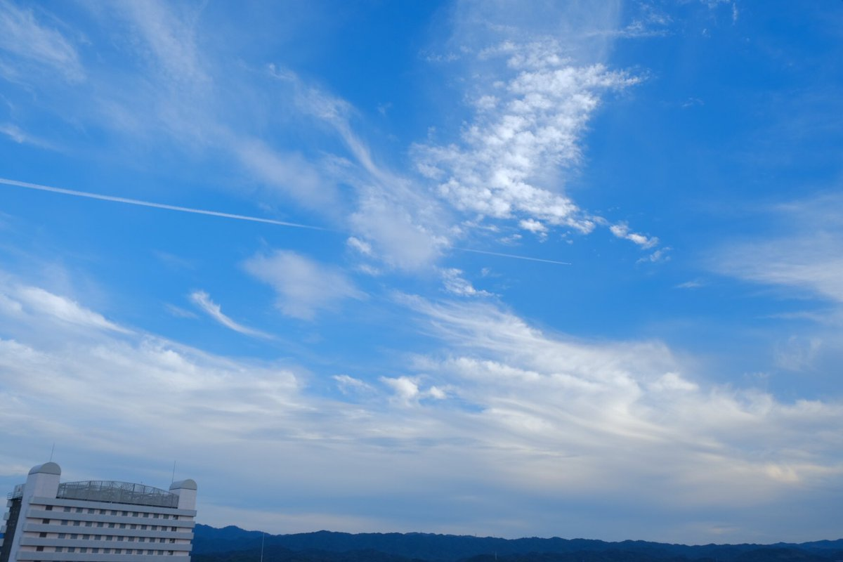 こんな風に生きていたいだけ . #fujifilm #fujifilm_xseries #tokyocameraclub #IGersJP #Team_JP #lovers_nippon #daily_photo_jpn #art_of_japan_ #japan #日本の風景 #ファインダー越しの世界 #カメラ好きな人と繋がりたい #カメラマンさんと繋がりたい #モデル募集 #被写体募集  #泉佐野pic.twitter.com/FDiMCyP4JU