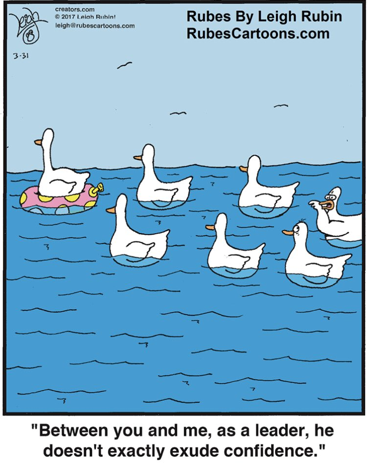 What the flock?!  #leadership #leadershipdevelopment #confidence #inspireconfidence #ducks #leader #leaders #leadershipquotes #cartoon #cartoonist #cartooning pic.twitter.com/pSCs2yEmMD
