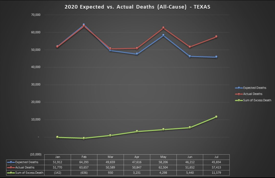 BREAKING: Texas had 11,500 excess deaths in July alone. One state, one month.   A tragedy of unprecedented proportion.   CDC data. Graph courtesy of @JessStrawn. https://t.co/MtXIz4mi99