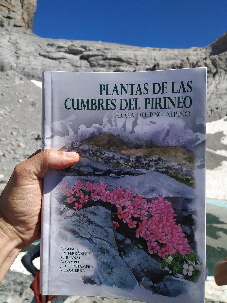 Enhorabuena a los autores: sin duda un nuevo referente de la rica Flora de@la@alta montaña pirenaica