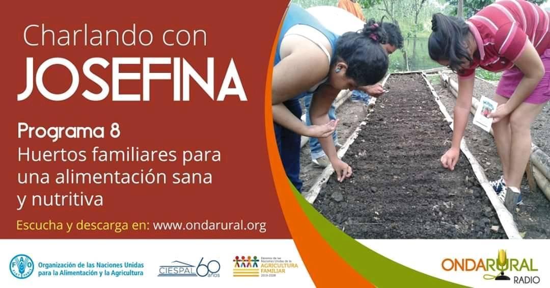 #APRENDAMOS  ¿Sabías qué? Los #HuertosFamiliares son agroecosistemas altamente adaptativos y de origen ancestral, en los que las #familias trabajan, para juntos producir alimentos sanos y nutritivos., descarga y comparte http://bit.ly/3eJyfY5pic.twitter.com/aMcxCES1MC