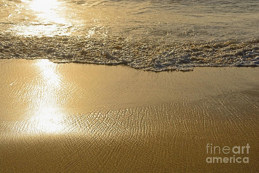 #Golden #Seashore by Kaye Menner #Prints #Products for #Sale at >> https://buff.ly/2Dv9H7r pic.twitter.com/luWKdFT4oa