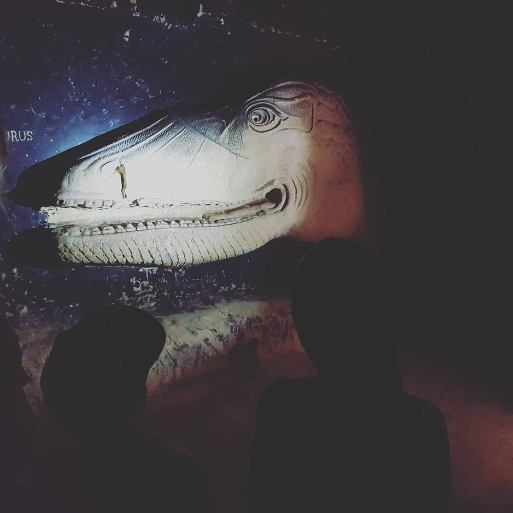 O my God it is the Heinosaurus!  Saaie muur? Tijd voor een Hein aan de muur!   #dutchart #artparis #dutchartist #impressionistart #event #interieurdesign #impressionist #interieurontwerp #interiorstyling #impressionism #stockholm #postimpressionism #lichtwerker #impressioni…pic.twitter.com/Cf4Tbwl2SW