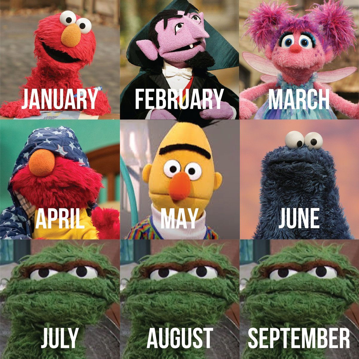 2020 as told by your friends on Sesame Street 🤣