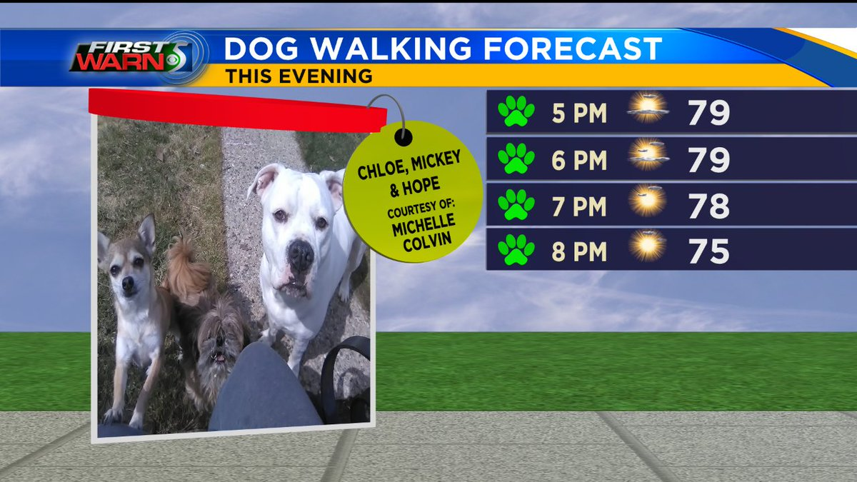 It's a family photo Friday, feautring Chloe, Mickey, and Hope! Yet another gorgeous evening for you walk with the pups, so get out there and enjoy! #FirstWarn5pic.twitter.com/s0SEeQcK3C