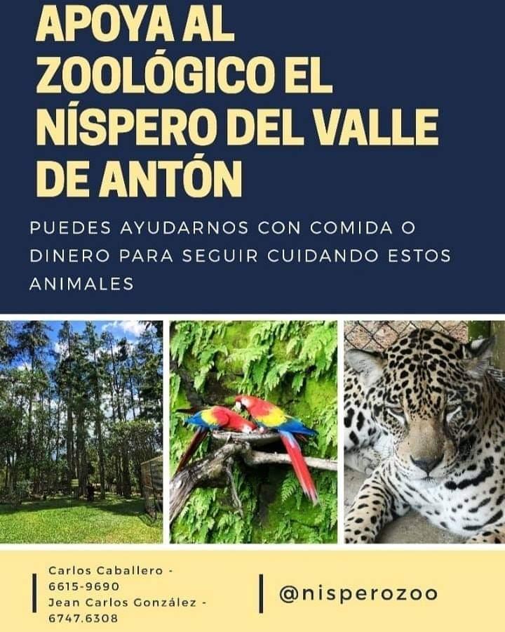 🇵🇦 Favor RT 🇵🇦 Los animalitos del Zoo El Níspero en El Valle de Antón necesitan nuestro apoyo 🐾❤️