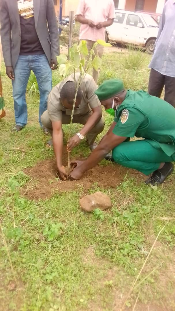 Jema'a LG Chair Hon Peter Danjuma Averik has flagged off this year's trees planting campaign with a call on the communities to help conserve and regenerate the environment to guarantee a comfortable life style and improve living conditions for both human kind and animals. pic.twitter.com/ER44uYwqNI