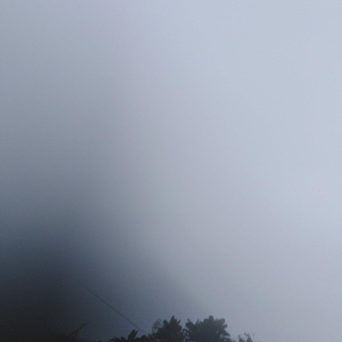 RAIN MORNING  #good_morning #صباح_الخير pic.twitter.com/hFDWQl0yeZ