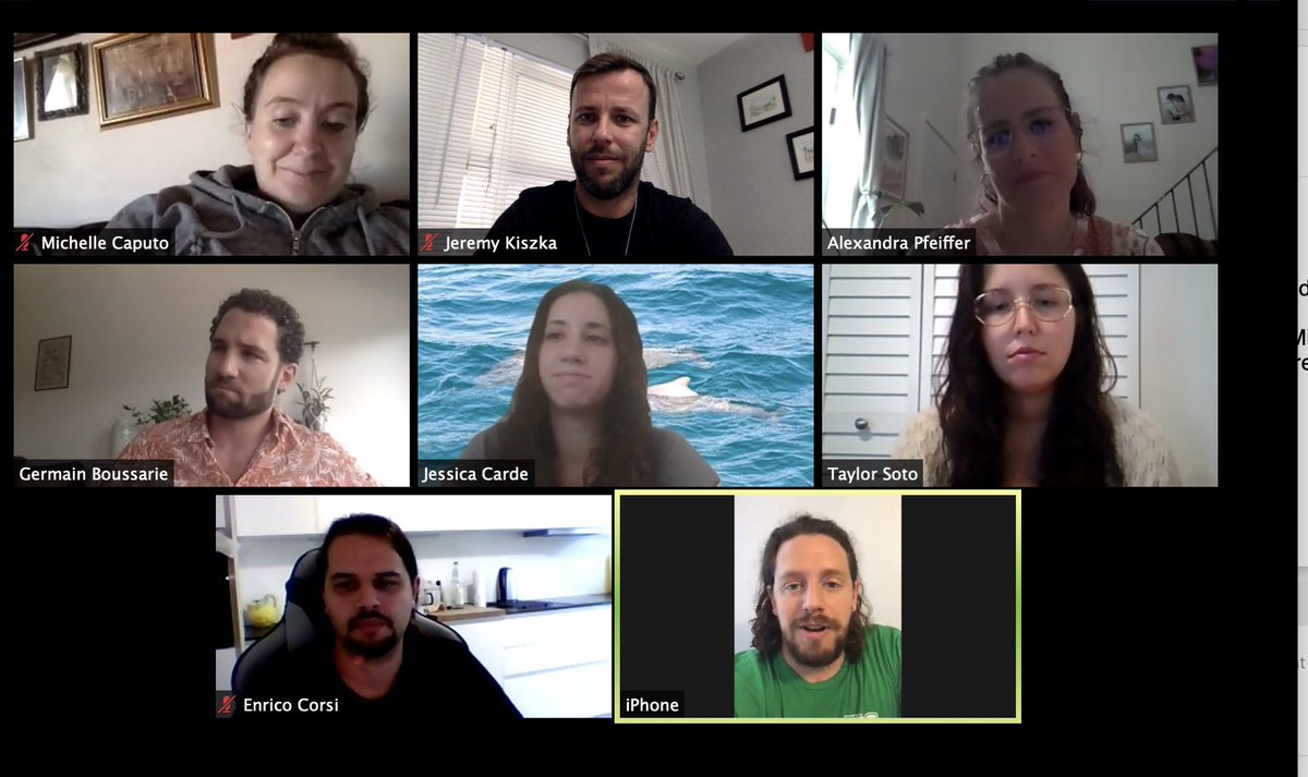 This is how our lab looks like this fall! Remotely meeting of course...