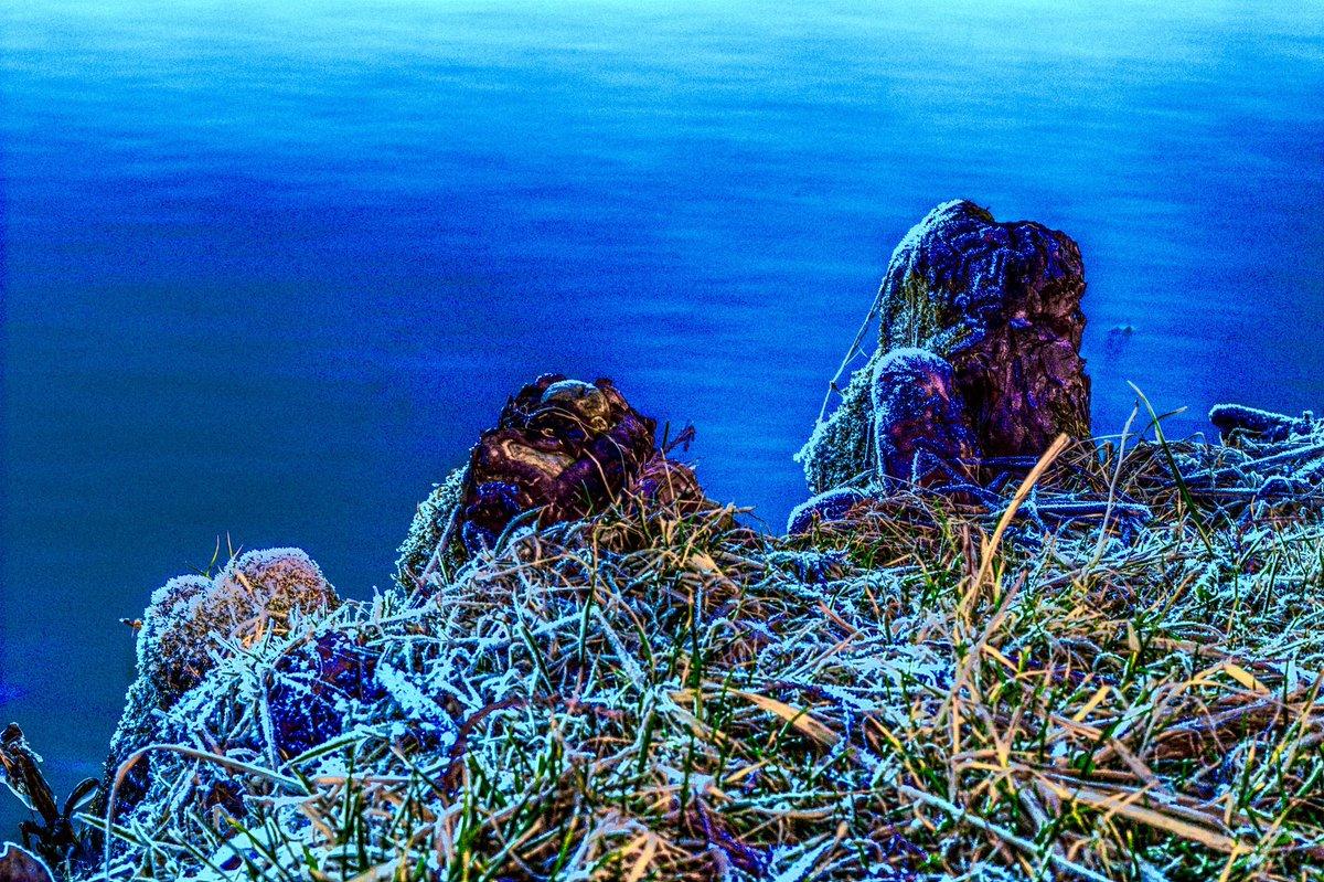 Lake edge. #vaporscape #vaporwave #vaporwaveaesthetic #vaporwave #landscape #landscapephotography #saturation #vibrantcolors #vibrant #hdr #editpic.twitter.com/DDKPq54H1V