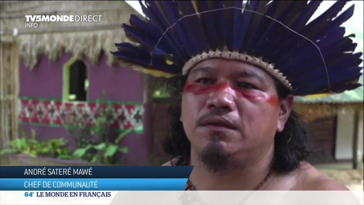 En Amazonie, le coronavirus touche de plein fouet les indigènes. Certains croient en une guérison grâce à la nature. D'autres, font confiance à la médecine moderne. Tous tentent de transmettre leur héritage aux plus jeunes, afin qu'il ne disparaisse pas, à cause de la pandémie. https://t.co/1FNvOdFzsr
