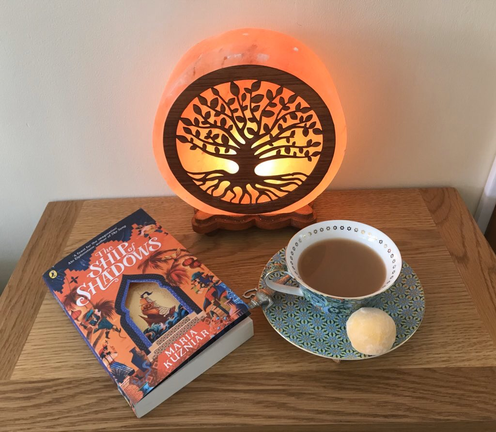 I've hardly had any time for reading this week, but I've crammed The Ship of Shadows by @thecosyreader into every spare minute! I'm halfway through and the world building is extraordinary. Every scene is a treat for the senses and gives me the need for cake 🍰