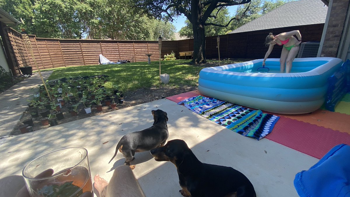 We went standup paddleboarding on White Rock Lake for the first time this morning (why'd we wait??). Water's a bit choppy but was fun anyway. Now drinking rum smashes and chillin by the faux pool. It's Saturday AF over here. pic.twitter.com/u5y4s7pjst
