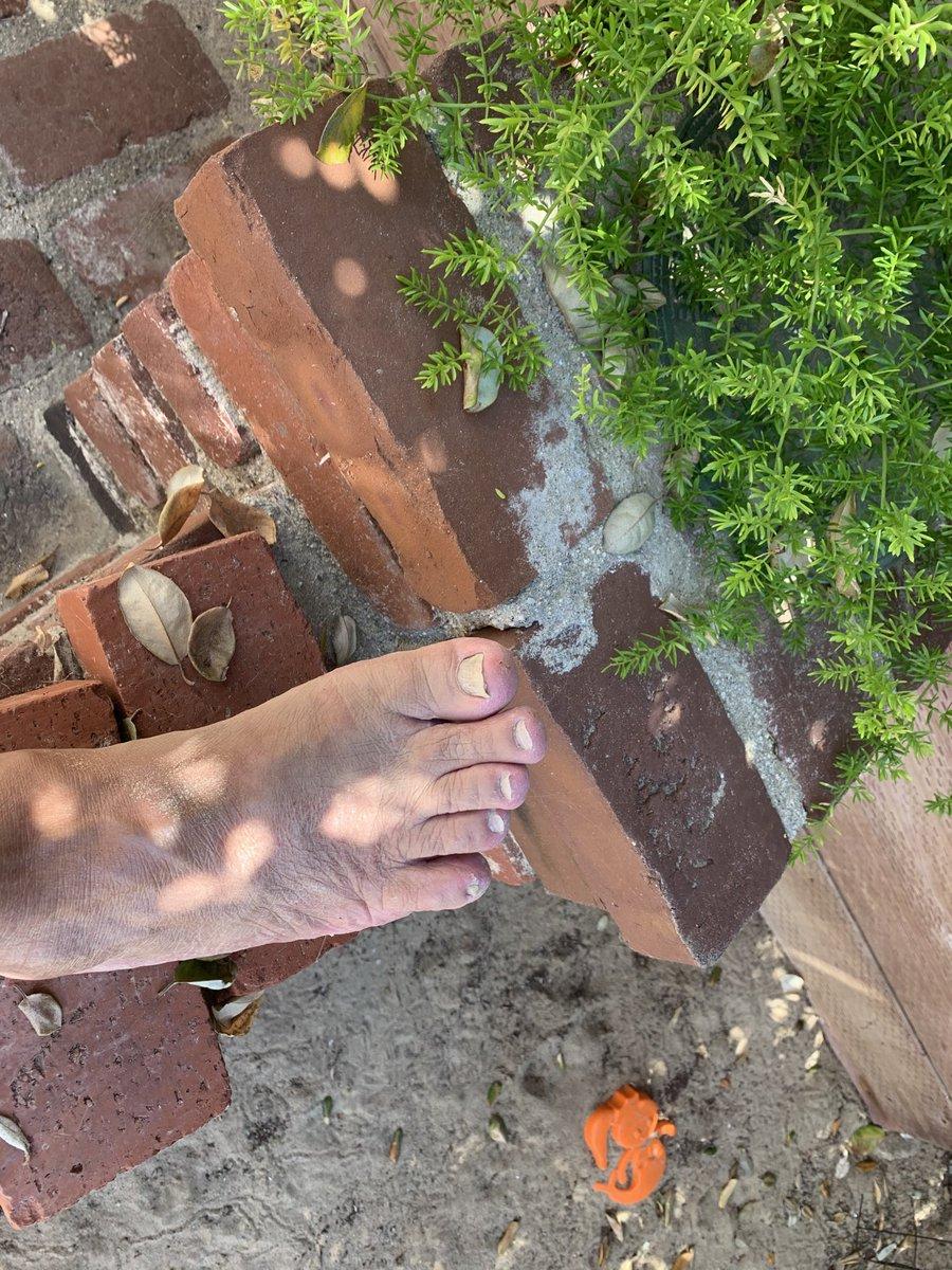 Trollfoot bricks