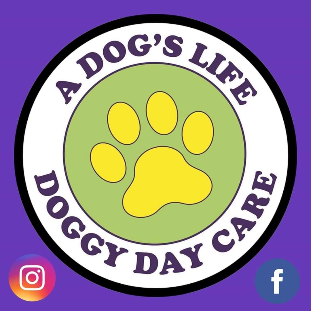 Welcome to A Dogs Life Dog Day Care UK LTD Twitter account #dogs #doggydaycare #pets  #petservices #lovedogs #bestjobever #adogslife #adogslifedogdaycareltd  #doggydaycareuk #Grantham #Lincolnshire #Meltonmowbray #dogsitterspic.twitter.com/D1xmTu9zv4