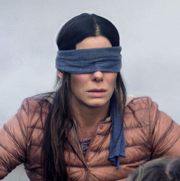 When viewed with 2020 hindsight, #BirdBox is not a terrible #movie:   Just replace the monster with the #Coronavirus, the #blindfold with #facemasks, and you will see that those who blindly follow authorities & medical experts will most likely survive this #pandemic! #MovieReview pic.twitter.com/MsHBr8rJtD