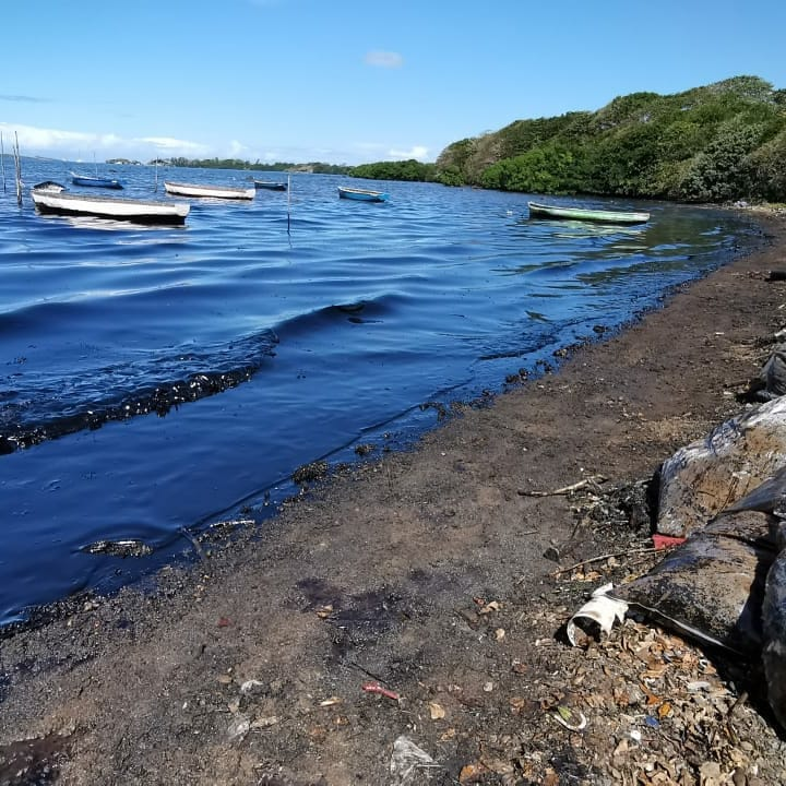⚠️PLEASE SHARE AS WE MUST GET MORE HELP FOR MAURITIUS!⚠️ This oil spill is happening now in Mauritius as their coastline is covered in thick black oil, killing all wildlife & marine life in its path, but they're ill-equipped for the cleanup SO please retweet/let's get them help! https://t.co/KB7L22qoYz