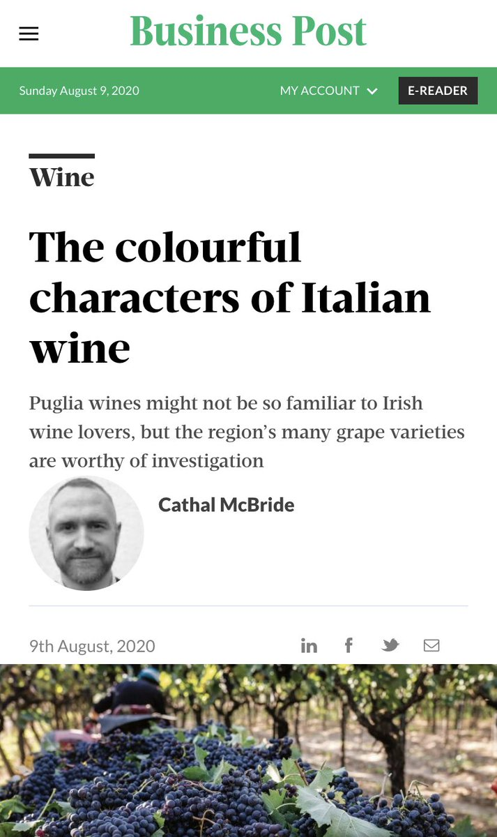 Very excited to have an article about wines from Puglia featured in the @businessposthq magazine today. Pick up a copy to see me in full technicolour! https://t.co/e9Vp8Wuv26