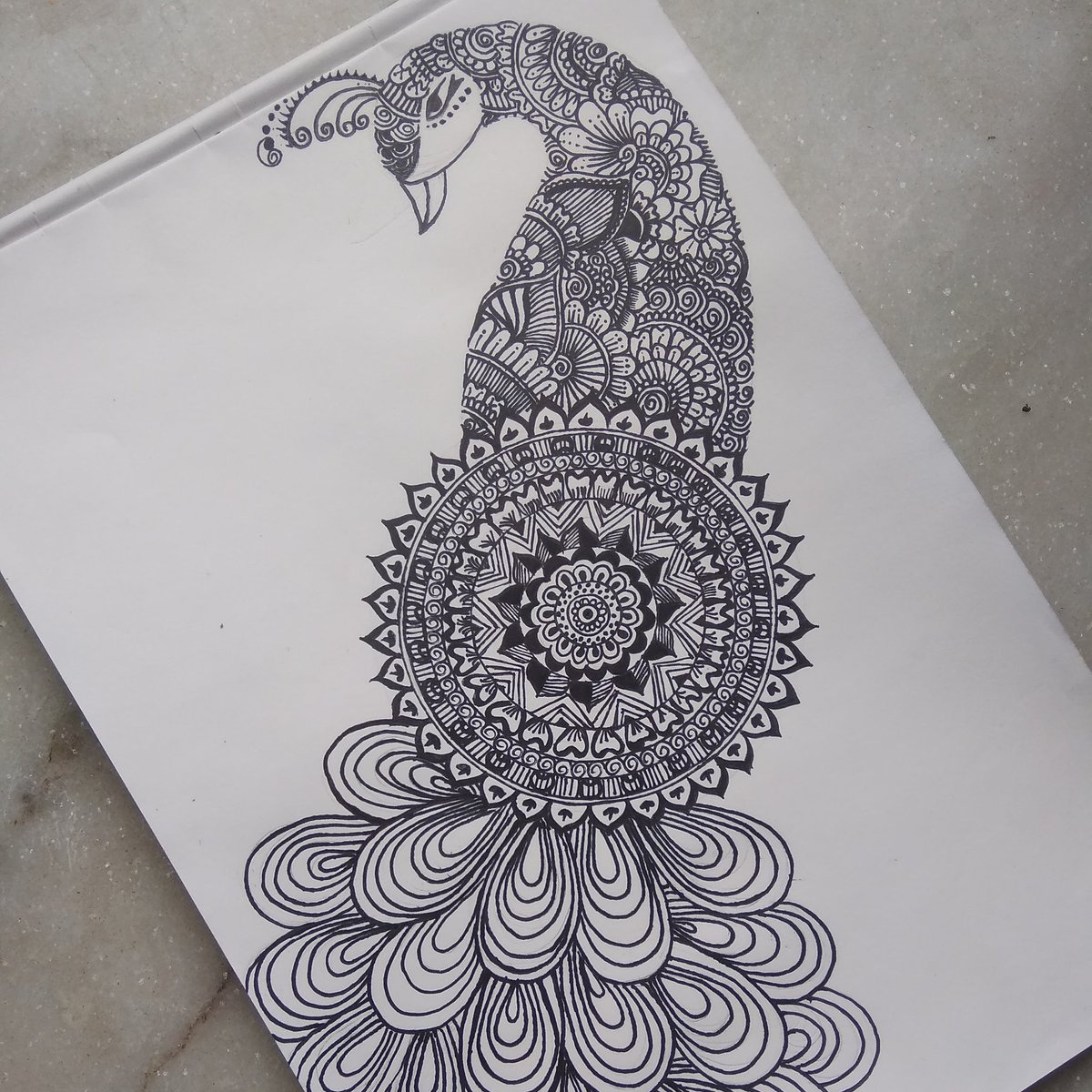 #MandalaArt #peacock #nationalbird #lovemanadala #lovedrawing  Hit a like  Follow for morepic.twitter.com/Qhaor62ydY