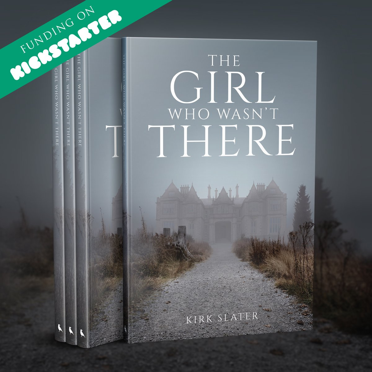 The Girl Who Wasn't There - A Victorian ghost story, is LIVE ON KICKSTARTER   A spooky story and a very unique add-on, check it out here http://kck.st/2DiHosz #kickstarter #kickstartercampaign #tuesdaybackers #52ravens #story #selfpublishing #writerscommunity #scarystories pic.twitter.com/1djHsOsyvs