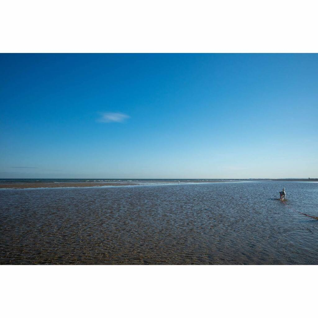 #dogwalk #beach #oostkapelle #niederlande#holland#netherlands#landscapephotography #landscape #grist #grsnaps #ricohgr3 #ricoh #ricohgriii #ricohgr #ricoh_gr #ricoh_gr_official #bluesky #sea #sand #lola #prt #parsonrussellterrier https://instagr.am/p/CDLfDTTAGTY/ pic.twitter.com/tNzleEsbHg