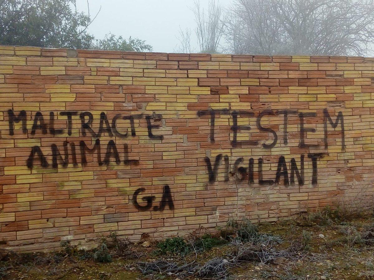 .@gapcooperativa denúncia noves pintades i amenaces en contra de #ramaders i #ramaderes de #lesGarrigues.   https://t.co/zZcxK9qUgO https://t.co/FGAeqmCazO