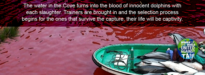 The ocean turns blood red and those dolphins that are selected by the trainers will spend the rest of their lives in captivity #WOWvTaiji #Taiji wowvstaiji.com 😡🩸🩸🐬😡