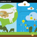 Image for the Tweet beginning: New review on methane emissions