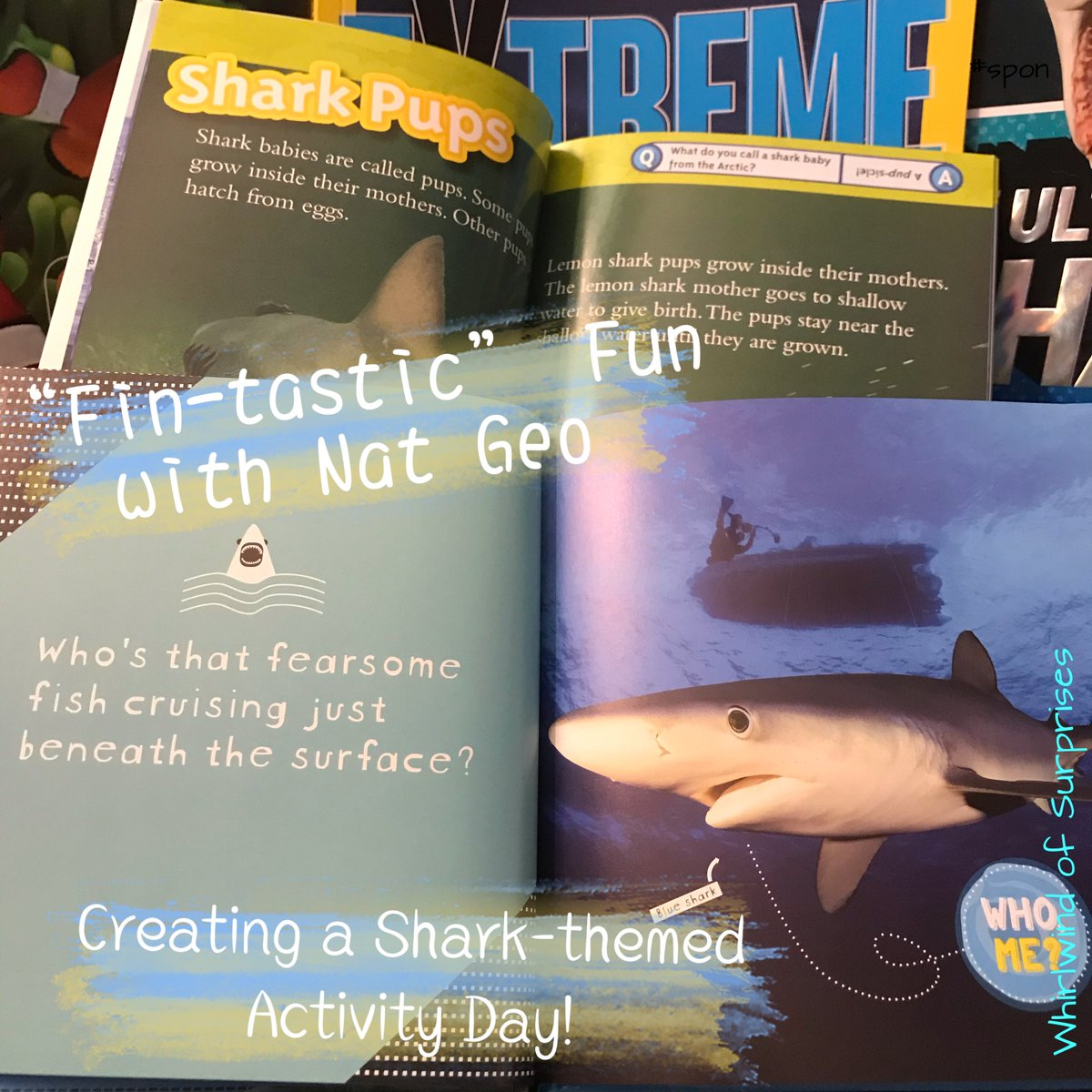 Fin-tastic National Geographic Shark Books