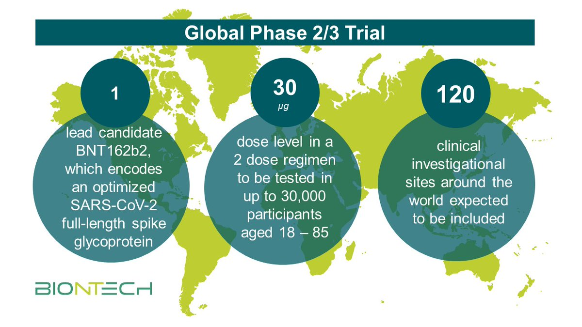 Biontech Se On Twitter We Announced The Start Of A Global Phase 2 3 Safety And Efficacy Study To Evaluate A Single Nucleoside Modified Messenger Rna Modrna Candidate From Our Bnt162 Mrna Based Vaccine Program