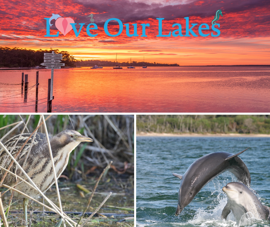 Want to hear the latest on the health of the Gippsland Lakes?   Grab the latest #gippslandscapes podcast and hear what's been going on  Heaps of initiatives & work by community groups - all making a difference  https://t.co/TCO7gHvbQN #gippslandlakes #loveourlakes #environment https://t.co/hsTJVmIwj0