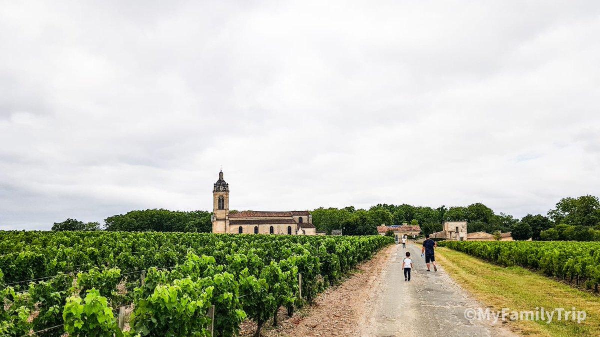 Quelque part dans les vignes du côté de Margaux. Au passage, il y a également une fabrique de chocolats, les demoiselles de Margaux, et cest une tuerie 😜 #familytravel #vigne #MagnifiqueFrance