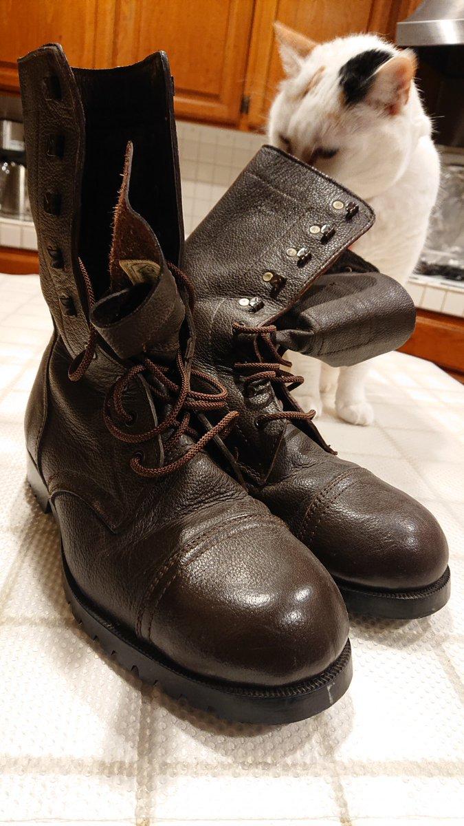 昭和49年度陸上自衛隊半長靴を嗅いで、真顔になる猫が面白すぎる!